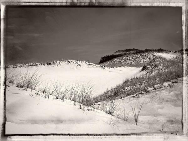 Sandy Neck Dunes Art Print