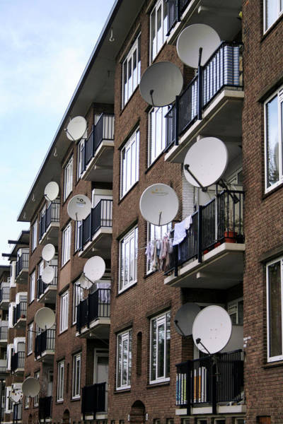 Satellite Dish Photograph - Satellite Dishes by Chris Martin-bahr/science Photo Library