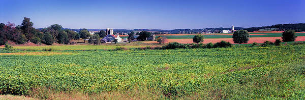 Lancaster County Photograph - Scenic View Of A Farm, Pennsylvania by Panoramic Images