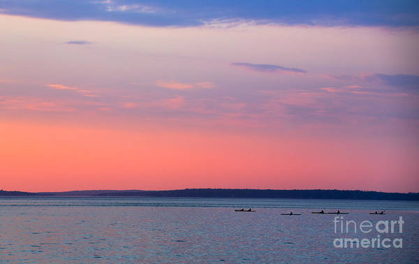 Wall Art - Photograph - Sea Kayakers In Frenchman Bay Maine by Diane Diederich