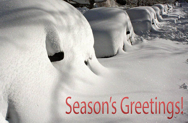 Wall Art - Photograph - Season's Greetings by Stuart Litoff