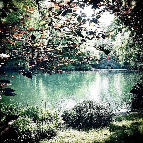 Photograph - Secret Garden by HweeYen Ong