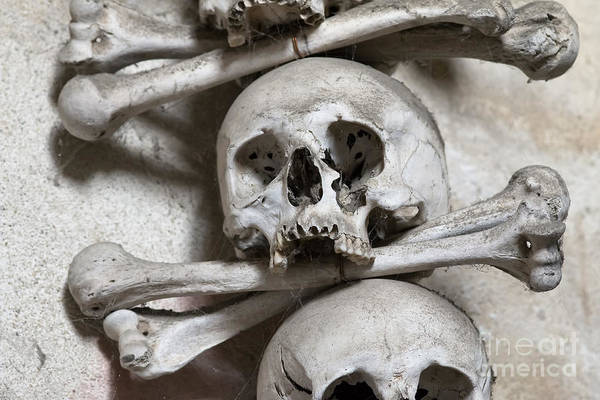 Charnel Photograph - Sedlec Ossuary - Charnel-house by Michal Boubin