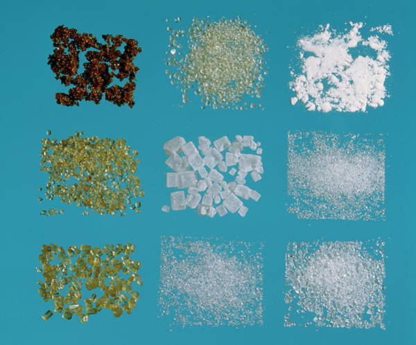 Icing Sugar Wall Art - Photograph - Selection Of Different Types Of Sugar Crystals by Adam Hart-davis/science Photo Library