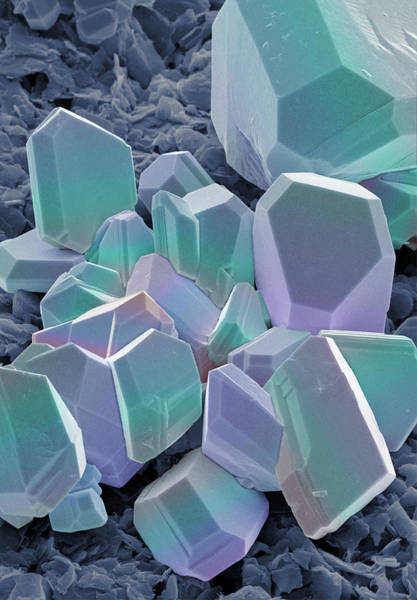 Wall Art - Photograph - Sem Of Silver Crystals by Power And Syred