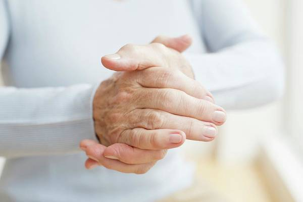 Wall Art - Photograph - Senior Woman's Hands by Science Photo Library