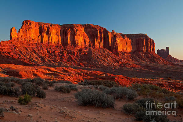 Photograph - Sentinel Mesa by Fred Stearns