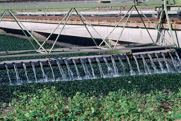 Greater Manchester Wall Art - Photograph - Sewage Works by Robert Brook/science Photo Library