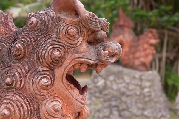 Lion Statue Wall Art - Photograph - Shisa, Or Okinawan Lion Gods by Paul Dymond