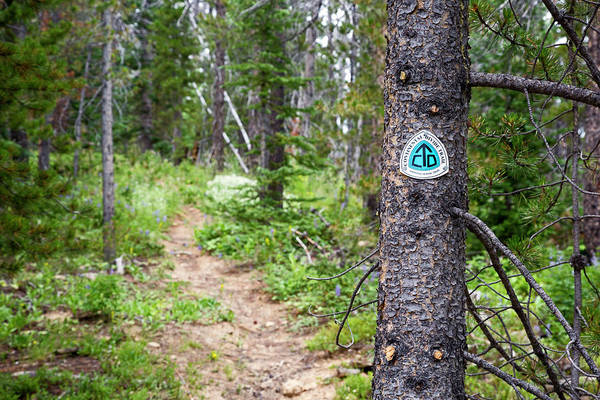Continental Divide Photograph - Sign On Continental Divide Trail by Jim West
