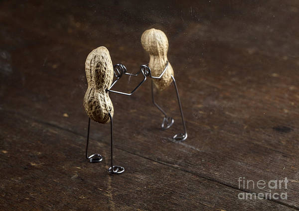 Figurine Wall Art - Photograph - Simple Things - Apart by Nailia Schwarz