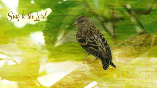 Sparrow Mixed Media - Sing To The Lord by Beverly Guilliams