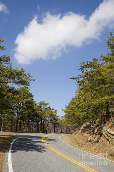 Wall Art - Photograph - Skyline Drive Shenandoah National Park by Jason O Watson