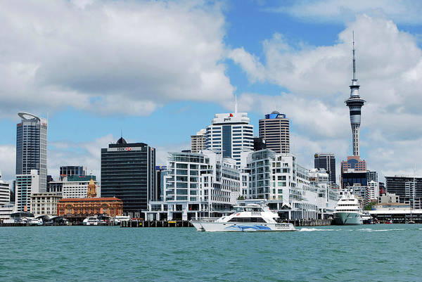 Auckland Photograph - Skyline Of Downtown Auckland, Auckland by Lynn Seldon