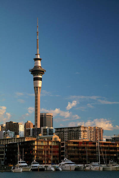 Central Business District Wall Art - Photograph - Skytower, Cbd, And Yachts, Viaduct by David Wall