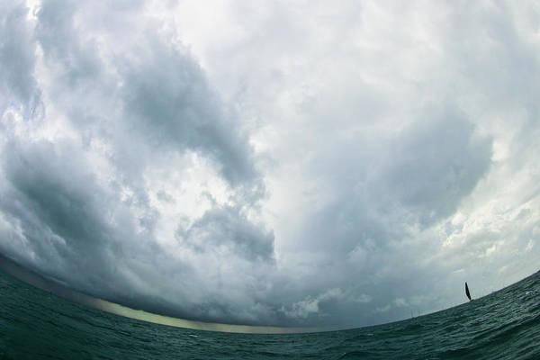 Photograph - Skyward by Steven Lapkin