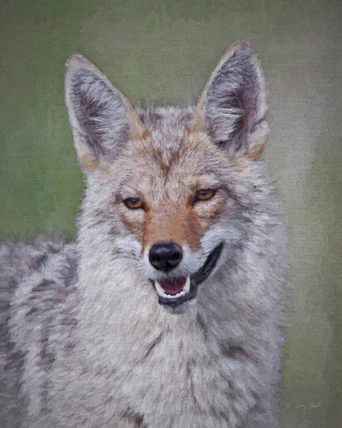 Digital Art - Smiley Wiley E Coyote by Gerry Sibell