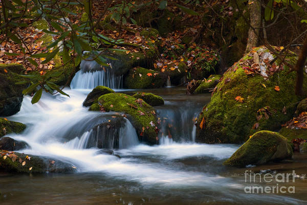 Photograph - Smoky Mountain Falls by Paul W Faust -  Impressions of Light
