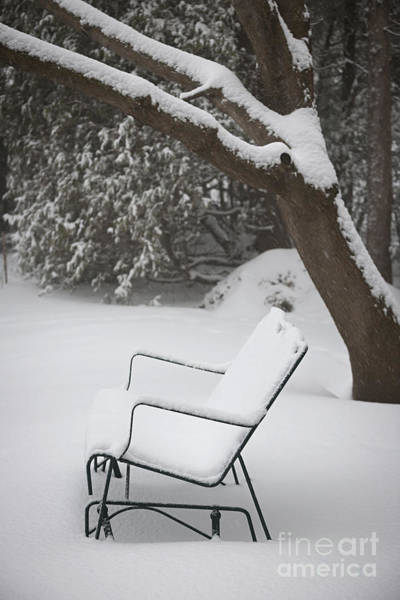 Photograph - Snow Covered Bench by Elena Elisseeva