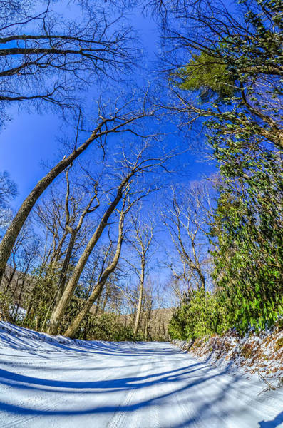Photograph - Snow Covered Road Leads Through The Wooded Forest by Alex Grichenko