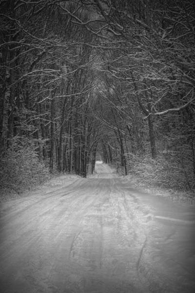 Photograph - Snow Covered Road by Randall Nyhof