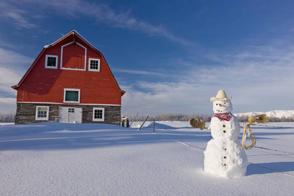 Christmas Photograph - Snowman Dressed Up As A Cowboy Standing by Kevin Smith