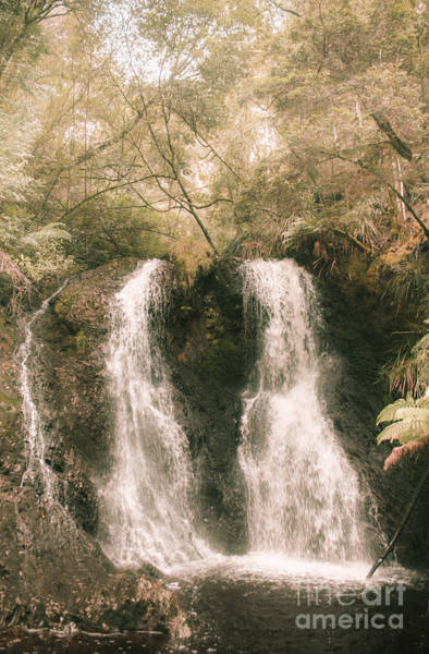 Photograph - Soft Vintage Forest Waterfall In Tasmania by Jorgo Photography - Wall Art Gallery