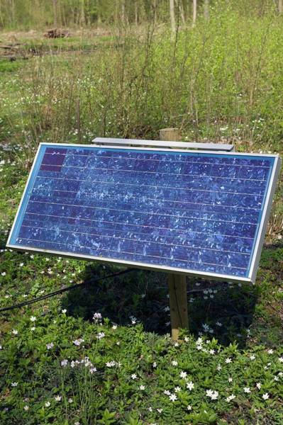 Norfolk Photograph - Solar Panel by Dr Jeremy Burgess/science Photo Library