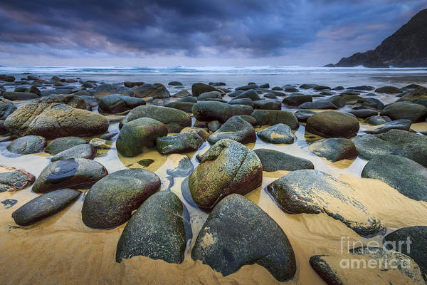 Photograph - Solitude Campelo Beach Galicia Spain by Pablo Avanzini