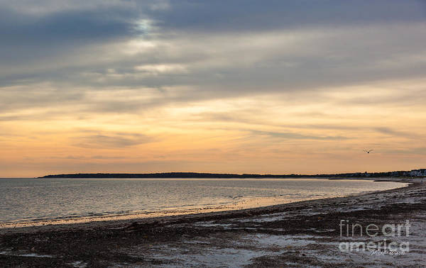 Wall Art - Photograph - Song Of The Sunset II by Michelle Constantine