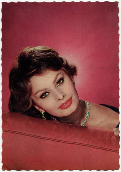 Wall Art - Photograph - Sophia Loren Italian Film Actress by Mary Evans Picture Library