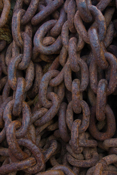 Rusty Chain Photograph - South Georgia Giant Rusted Chains Using by Inger Hogstrom