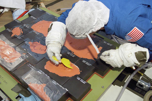 Rex Photograph - Space Shuttle Tile Repair Training by Nasa/science Photo Library