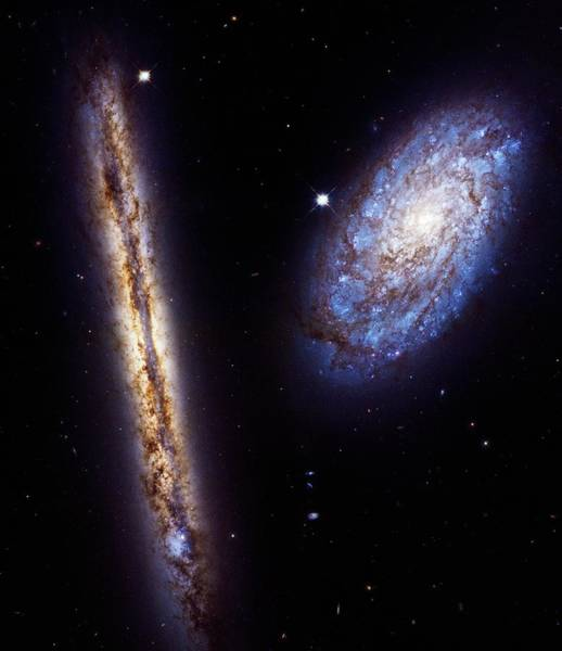 Wall Art - Photograph - Spiral Galaxies Ngc 4302 And Ngc 4298 by Nasa/esa/m. Mutchler (stsci)/science Photo Library