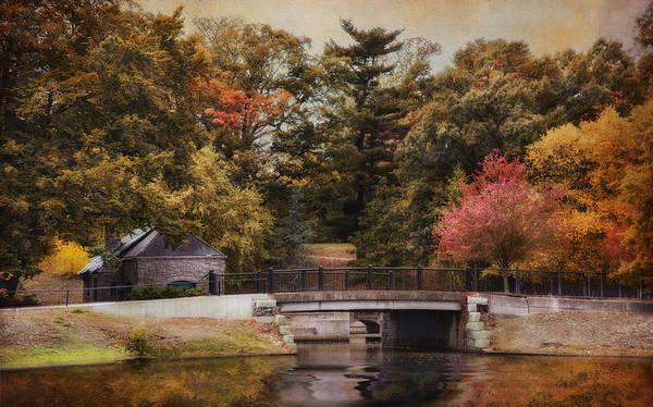 Photograph - Splendor In The Park by Robin-Lee Vieira