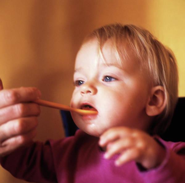 Blue Spoon Photograph - Spoon-feeding by Cristina Pedrazzini/science Photo Library
