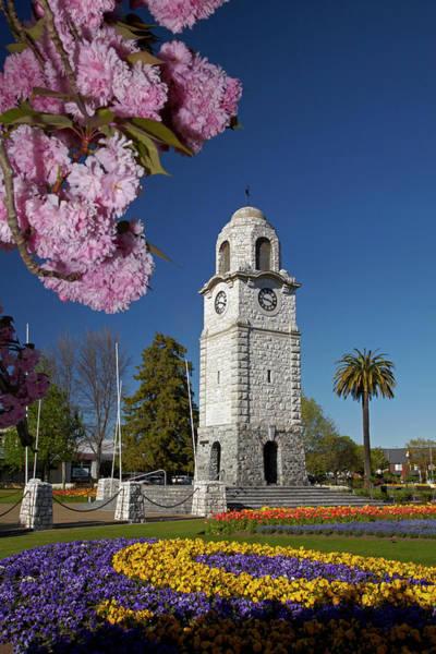 Wall Art - Photograph - Spring Blossom And Memorial Clock by David Wall