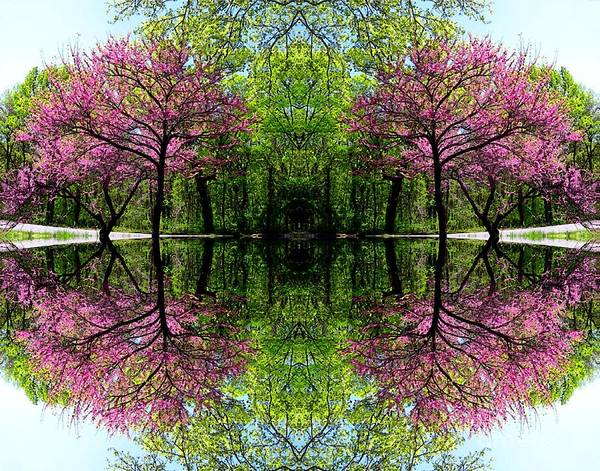 Digital Art - Spring by Dale   Ford