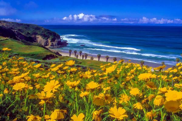 Orange County Digital Art - Springtime On The Headlands by Cliff Wassmann