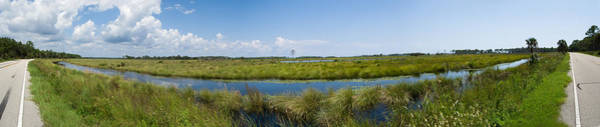 Wall Art - Photograph - St. Marks National Wildlife Refuge by Rich Leighton