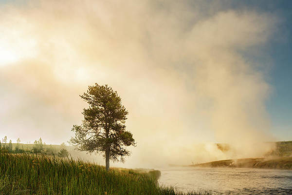 Firehole River Wall Art - Photograph - Steaming Mist At Sunrise Along Firehole by Adam Jones