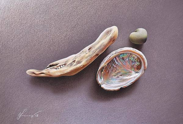 Drawing - Still Life With Abalone Shell by Elena Kolotusha