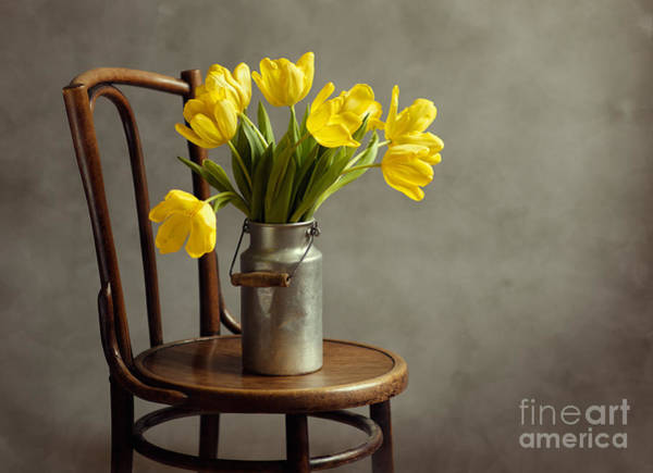 Soft Color Wall Art - Photograph - Still Life With Yellow Tulips by Nailia Schwarz
