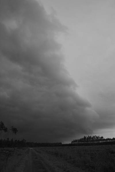 Wall Art - Photograph - Storm Over Forest 1 by Bob Richter