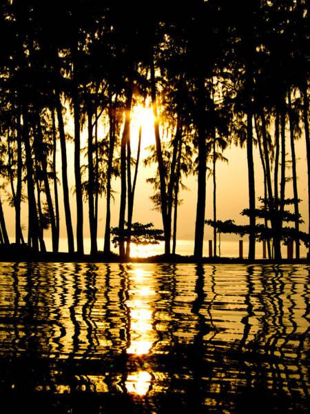 Photograph - Sun Dance by U Schade