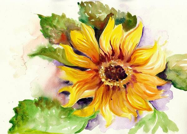 Sonne Wall Art - Painting - Sunflower Watercolor by Tiberiu Soos