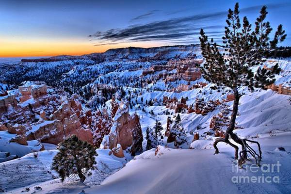 Photograph - Sunrise At Bryce by Adam Jewell