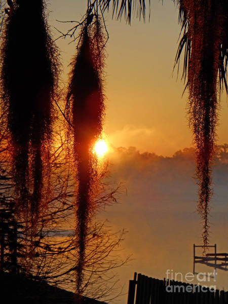 Photograph - Sunrise On Lake Weir - 3 by Tom Doud