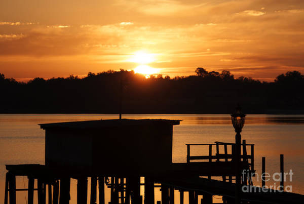 Photograph - Sunrise On Lake Weir - 5 by Tom Doud