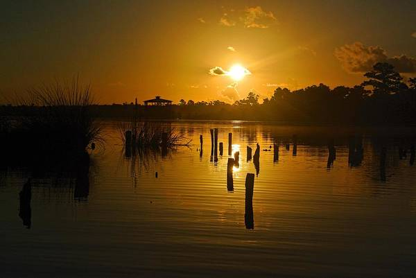 Digital Art - Sunrise On The Bon Secour River by Michael Thomas
